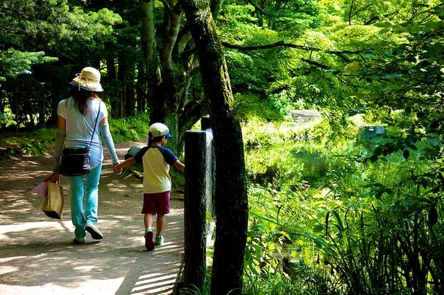 雲場池の遊歩道