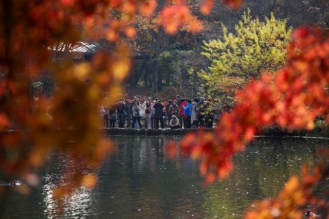 紅葉の雲場池9