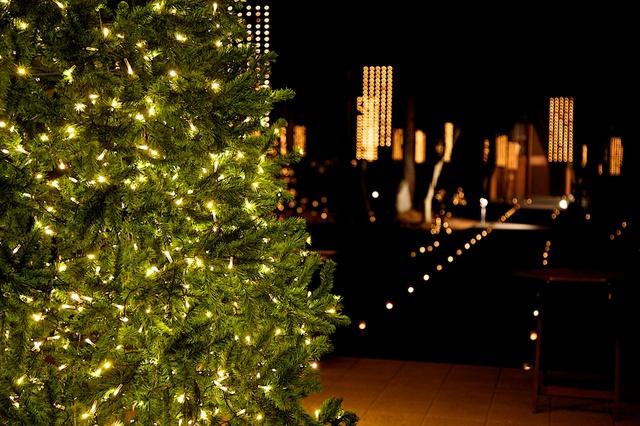 ブレストンコートのクリスマス02