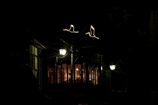 夜空に2匹の鶴