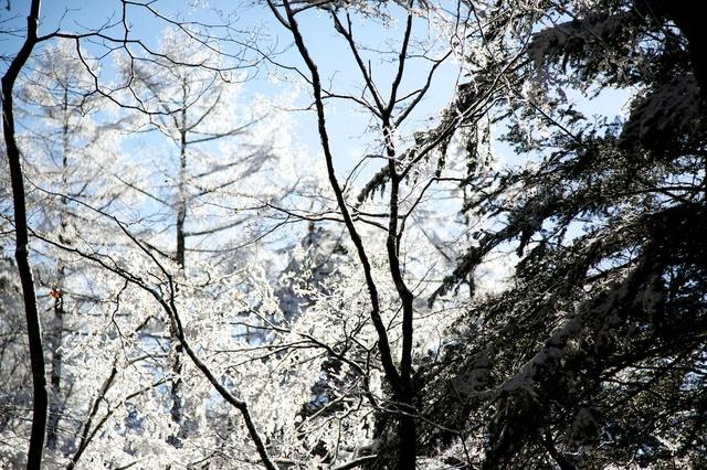 氷点下の街。軽井沢