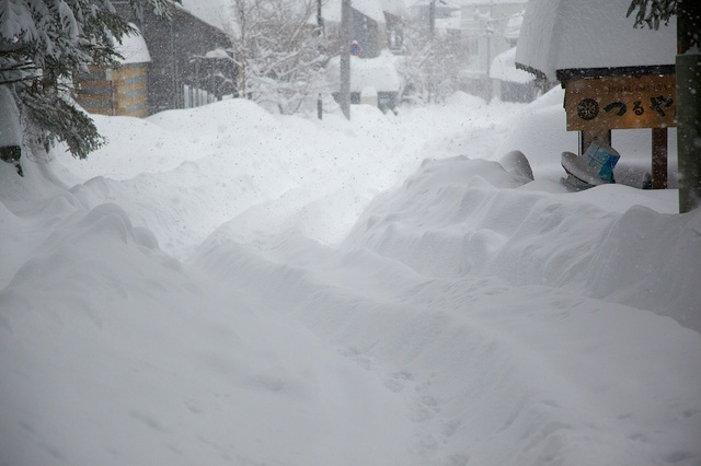 軽井沢観測史上初大雪02