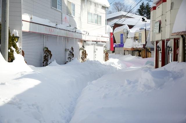 軽井沢の大雪03