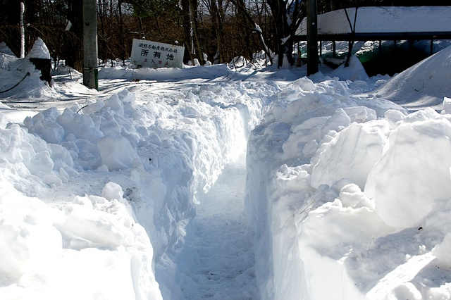 軽井沢、大雪から4日目07