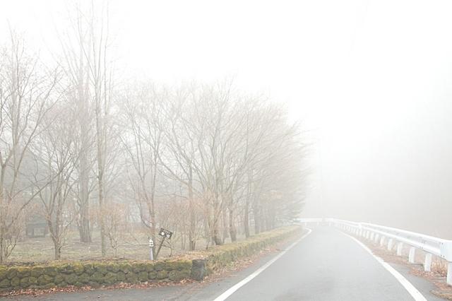 霧のお気持ちの道