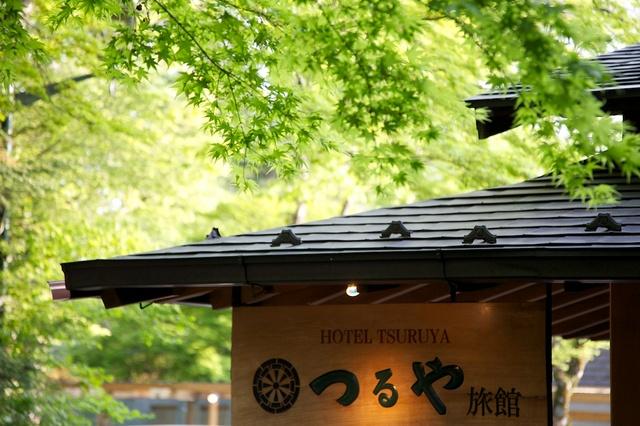 つるや旅館の玄関と緑