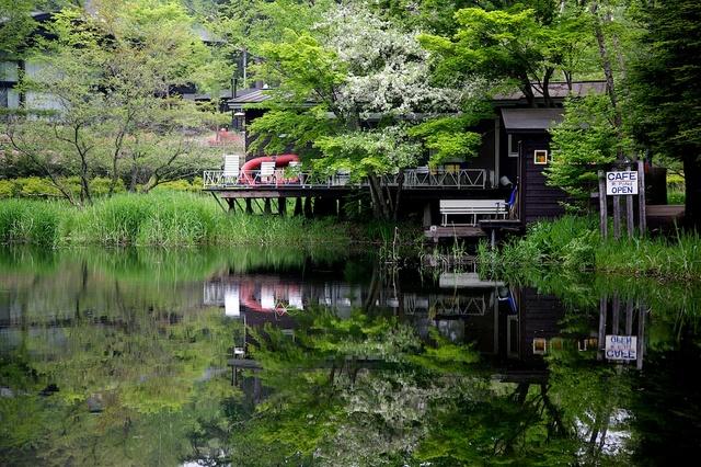 新緑の雲場池のカフェ