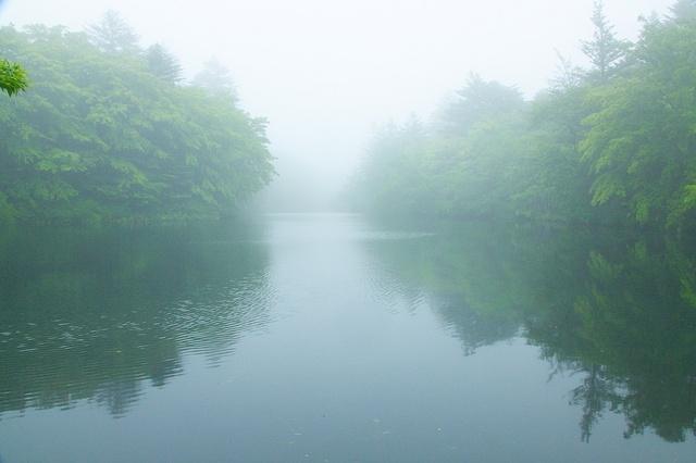 霧の雲場池