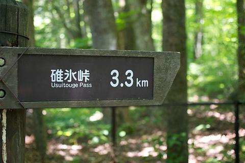 軽井沢宿から坂本宿まで中山道12