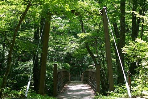 軽井沢宿から坂本宿まで中山道17