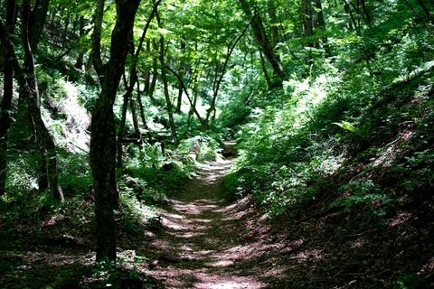 軽井沢宿から坂本宿まで中山道19