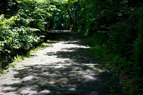 軽井沢宿から坂本宿まで中山道23
