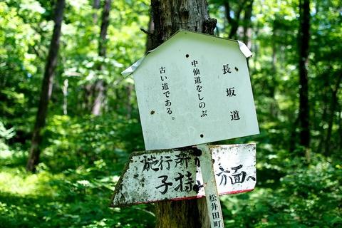 軽井沢宿から坂本宿まで中山道43