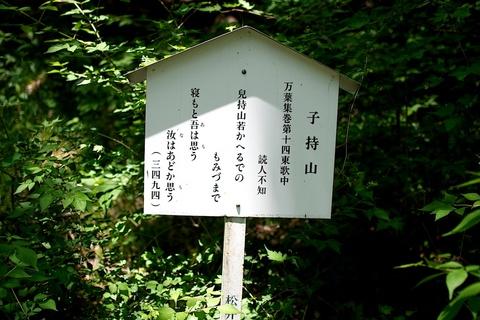 軽井沢宿から坂本宿まで中山道52