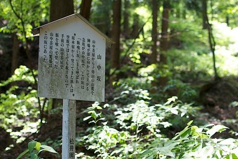 軽井沢宿から坂本宿まで中山道59