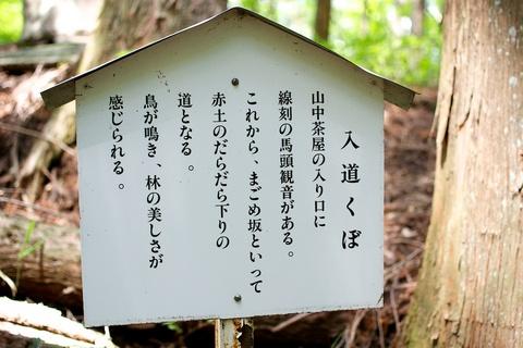 軽井沢宿から坂本宿まで中山道62