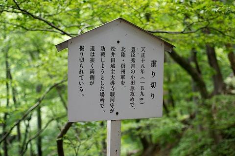 軽井沢宿から坂本宿まで中山道73