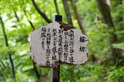 軽井沢宿から坂本宿まで中山道74