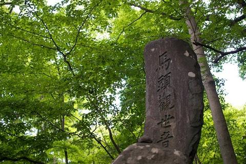 軽井沢宿から坂本宿まで中山道86