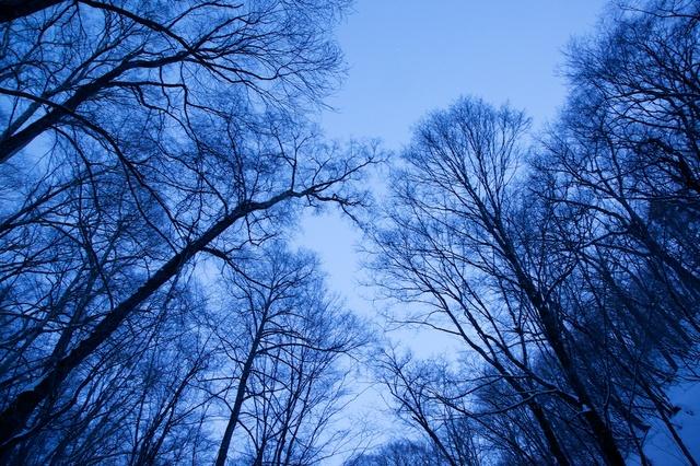 冬の白糸の滝06