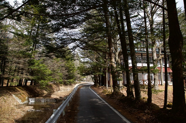 旧軽井沢、春の訪れ07.jpg