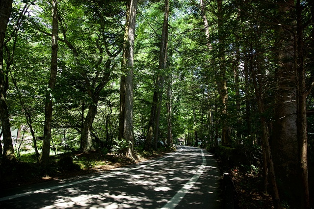 軽井沢散策水車の道01