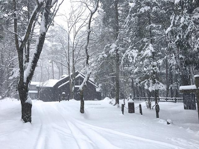 軽井沢の雪02