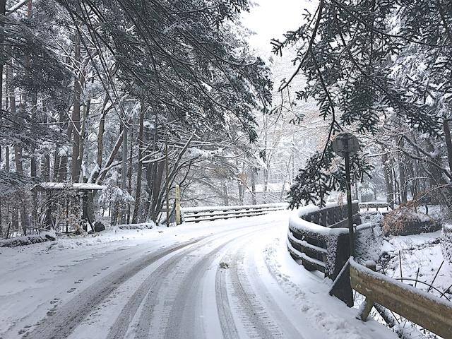 軽井沢の雪04
